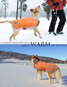 Hundemantel Vergleich